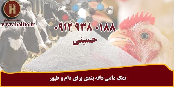 فروش نمک دامی صادراتی